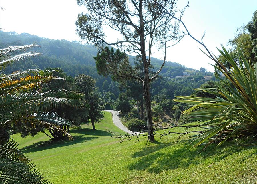 Sintra Palacio de Monserrat Gardens